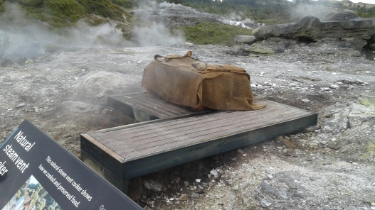 Steam cooking box in the geothermal valley