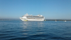 Cruise ship entering Tauranga Harbour