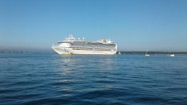 Cruise ship entering Tauranga Harbour