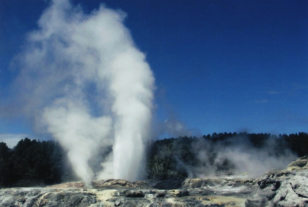 Pohutu is the largest geyser in the Southern hemisphere
